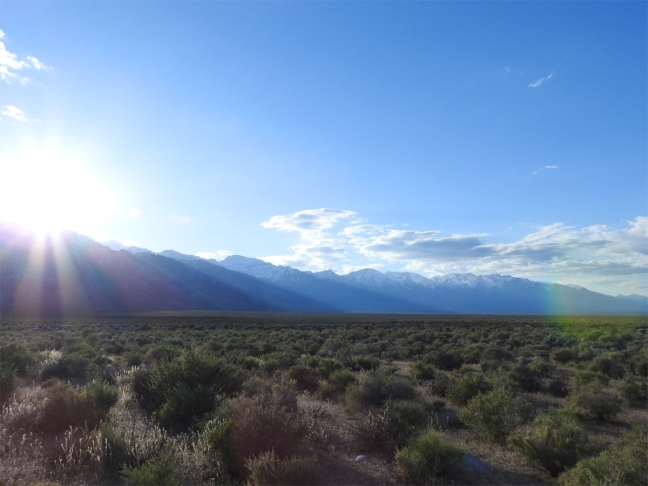 On BLM Land East of Mt. Whitney